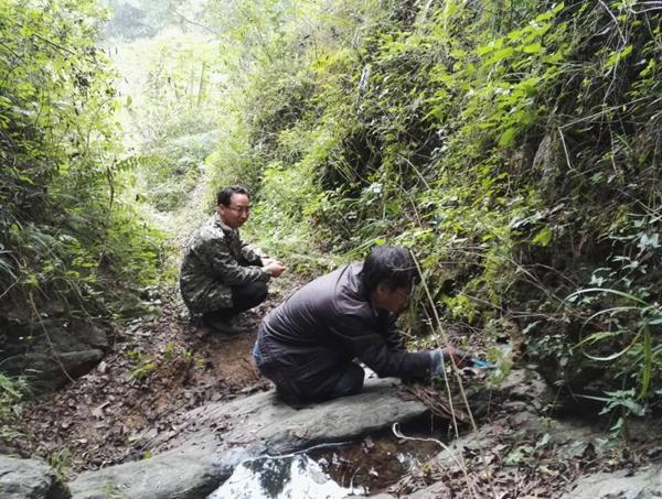 省区域地质调查研究院和集团专家到...
