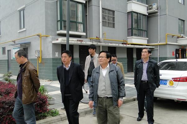 集团公司总会计师刘书灵到公司调研...